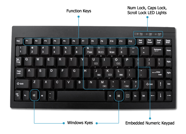 keyboard highlights