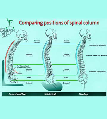 Comparing positions of the spinal column