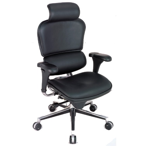 sc 1 st  Special Needs Computer Solutions & Ergohuman Chair LE9ERG - High Back with Headrest and Leather