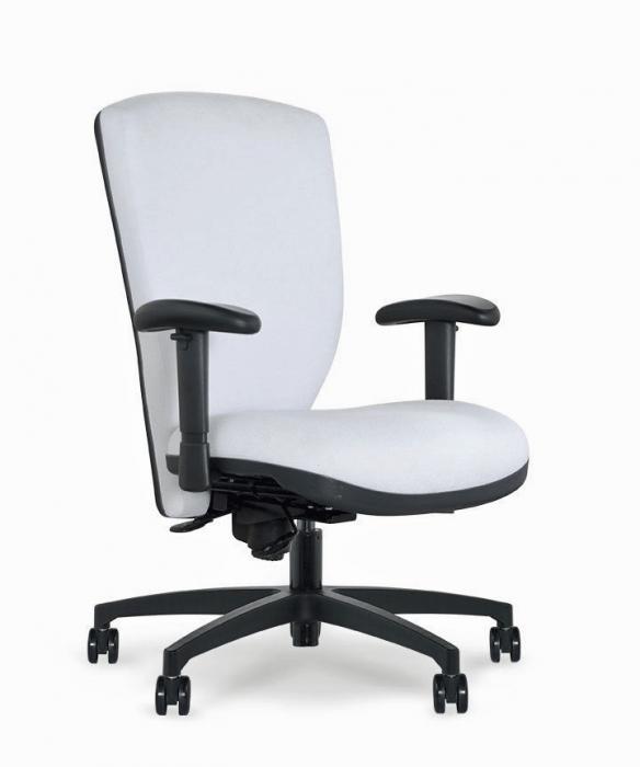 brisbane ergonomic task chair brisbane ergonomic task chair rh specialneedscomputers ca
