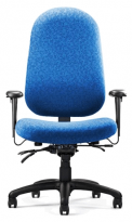 N�dure Ergo Chair