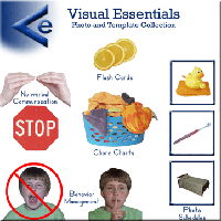 Visual Essentials