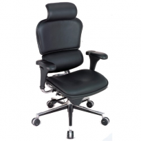 Ergohuman Chair LE9ERG - High Back with Headrest and Leather