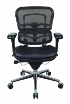 Ergohuman Mesh Chair with Leather Seat - LEM6ERGLO