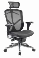 Fuzion Mesh Office Chair