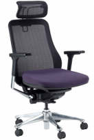 Symbian Ergonomic Mesh Chair