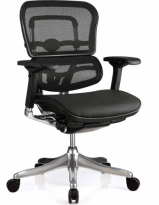Raynor Ergo Elite Chair - ME5ERGLTLOW