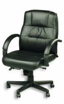 ACE Ergo Leather Chair