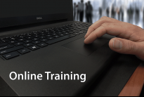 VP Online training