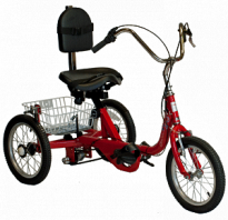 AnTryke 50-FC-1616 - ProSeries 1616 - 3 Speed Option Adaptive Tricycle