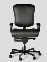 Concept 3150 Task Chair