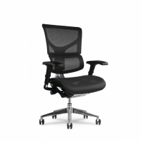 K-Sport Mgmt Chair - X2